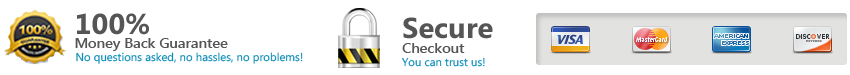 Secure Checkout Lock and Card Logo's